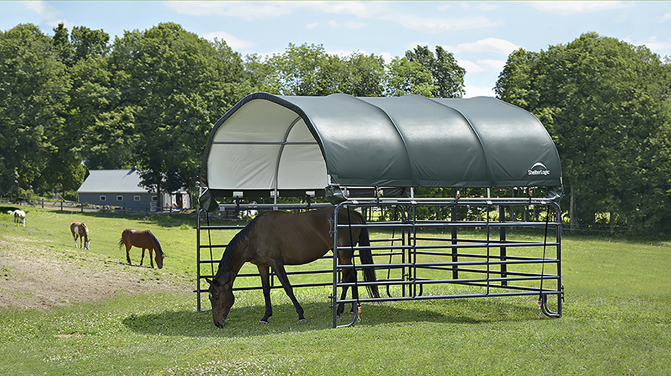Best Horse Shelter : Choosing a livestock shelter for your horses and animals