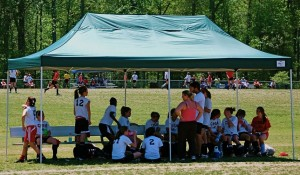ShelterLogic pop-up canopies & Get the Perfect Pop-Up Canopy Tailgate Tent for Your Event