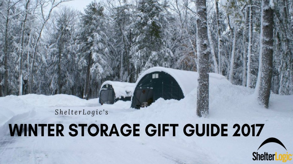 winter storage gift guide