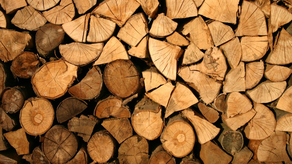 Improve Your Firewood Storage: 4 Basics Tips on What You