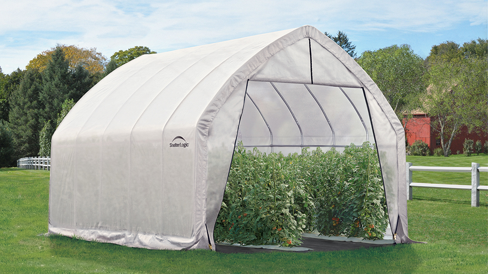Grower\'s Guide: What to Grow in a Greenhouse All Year Long ...